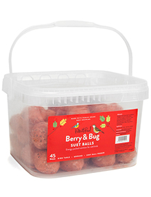 Berry & Bug Suet Balls
