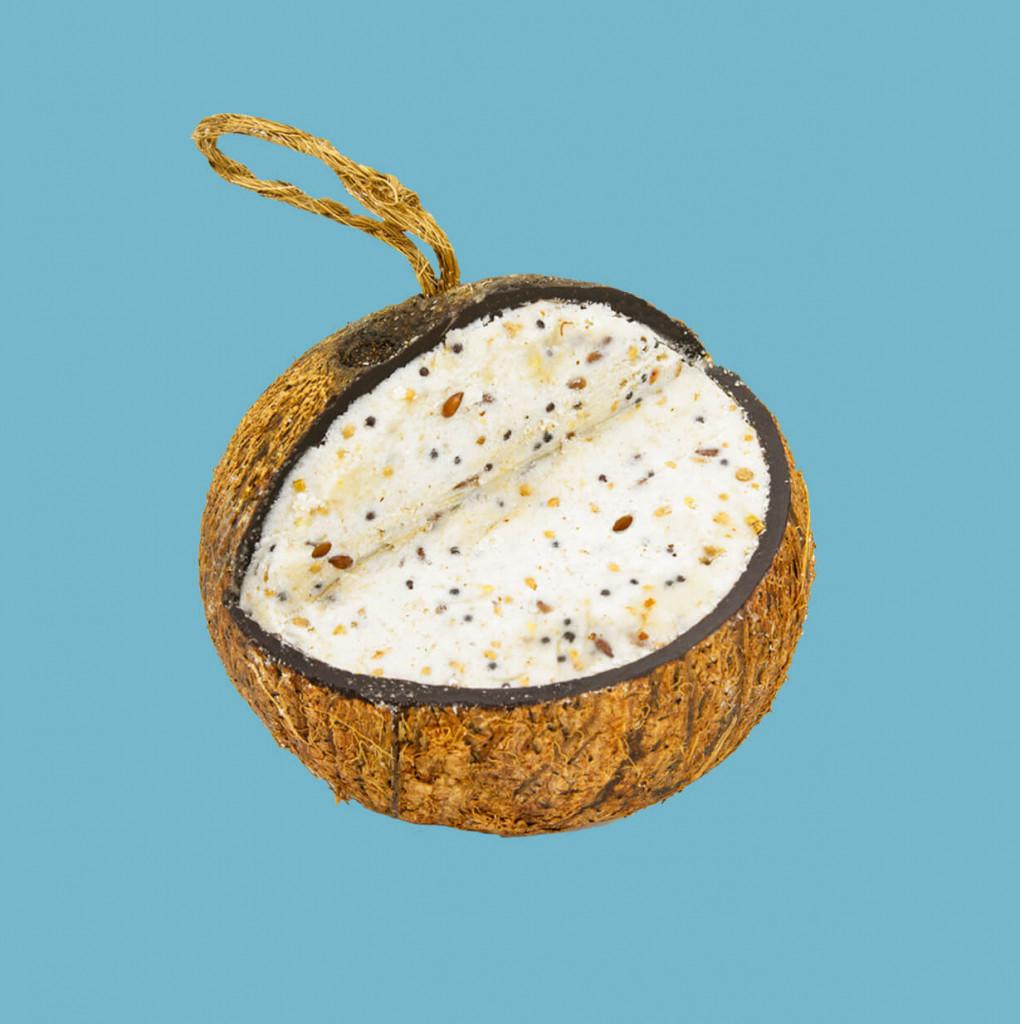 Mealworm Suet Coconut